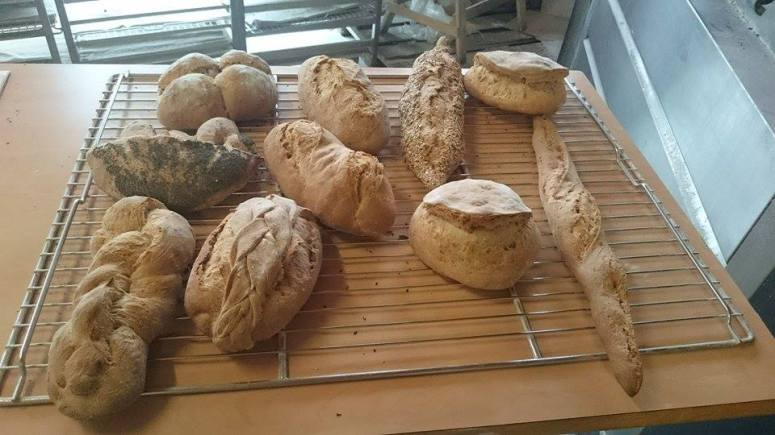 Fête du pain Saveurs et Saisons
